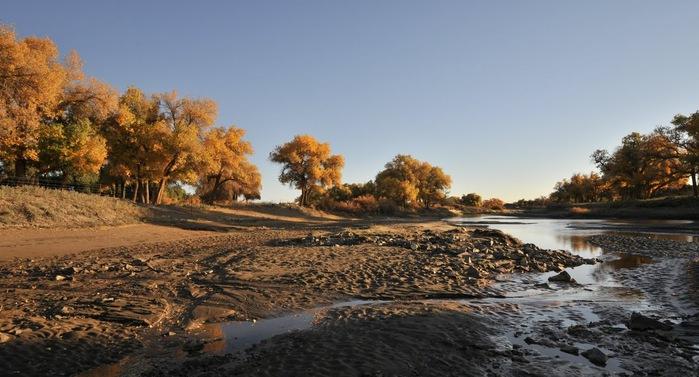 Геологический парк пустыни Алашань 21748