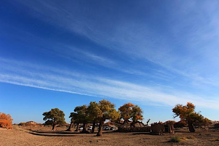 Геологический парк пустыни Алашань 95596