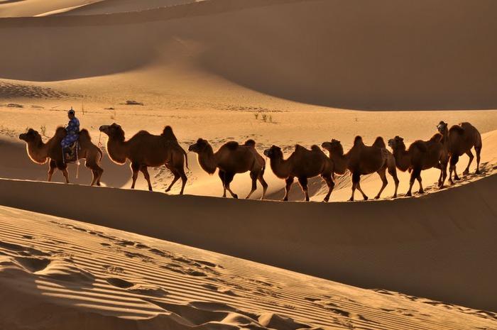 Геологический парк пустыни Алашань 37013