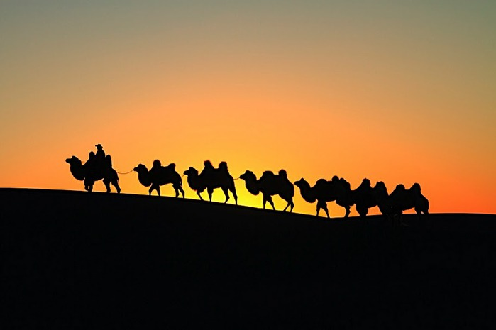 Геологический парк пустыни Алашань 13923
