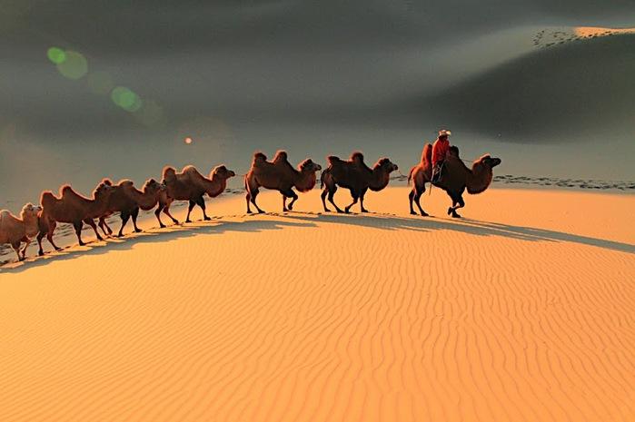 Геологический парк пустыни Алашань 30391