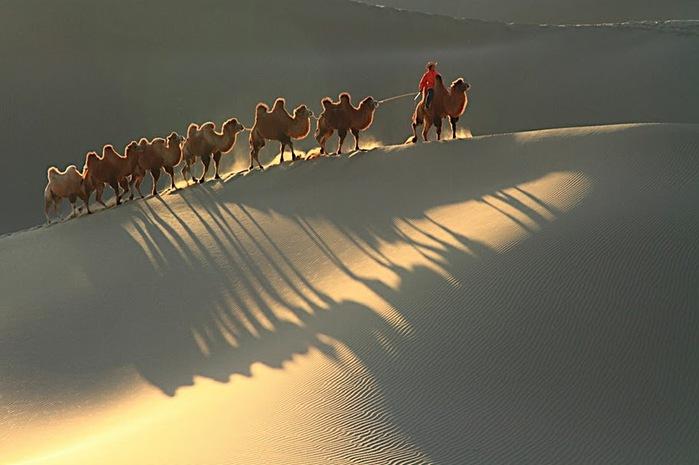 Геологический парк пустыни Алашань 28390