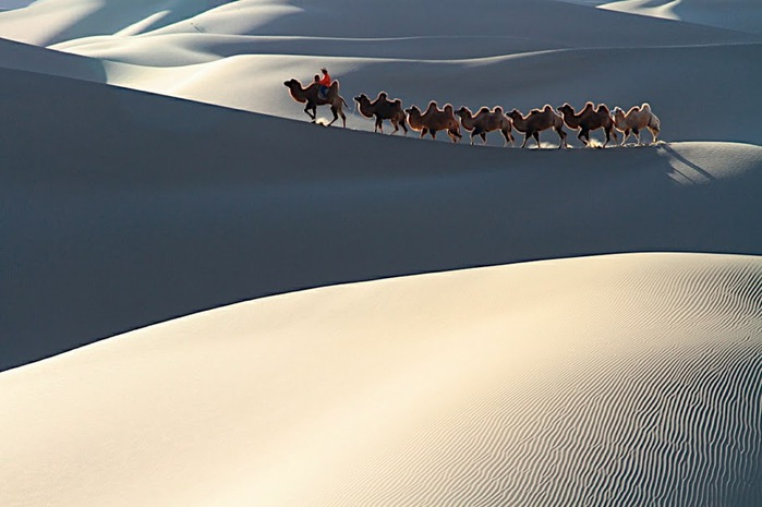 Геологический парк пустыни Алашань 49305