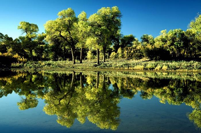 Геологический парк пустыни Алашань 34582