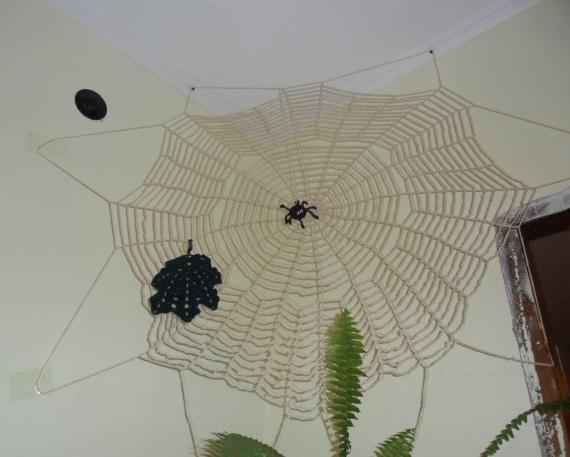 Моя паутина с пауком.