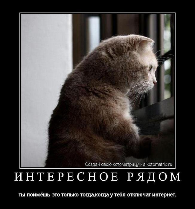 http://img0.liveinternet.ru/images/attach/c/4/81/121/81121596_kotomatrica_interesnoe.jpg