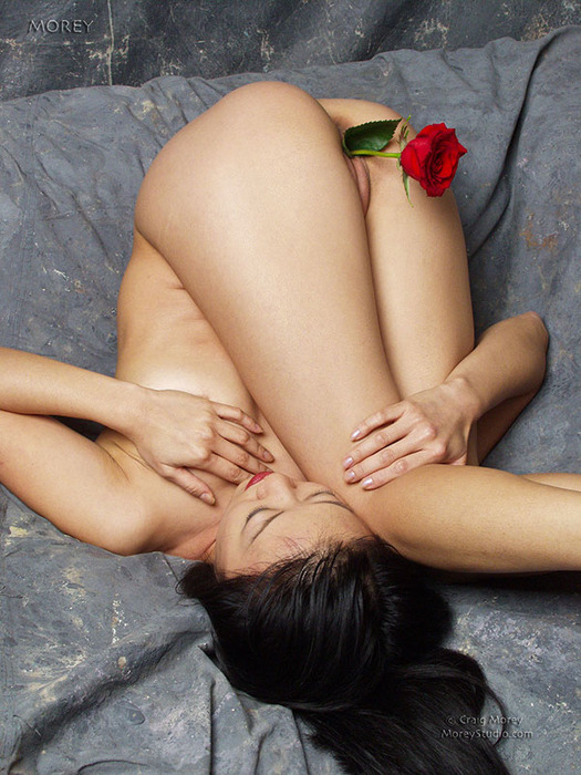 1324038111_tiger_lily_flowers_006 (525x700, 140Kb)