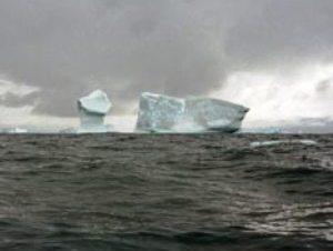 Антарктида (300x226, 10Kb)