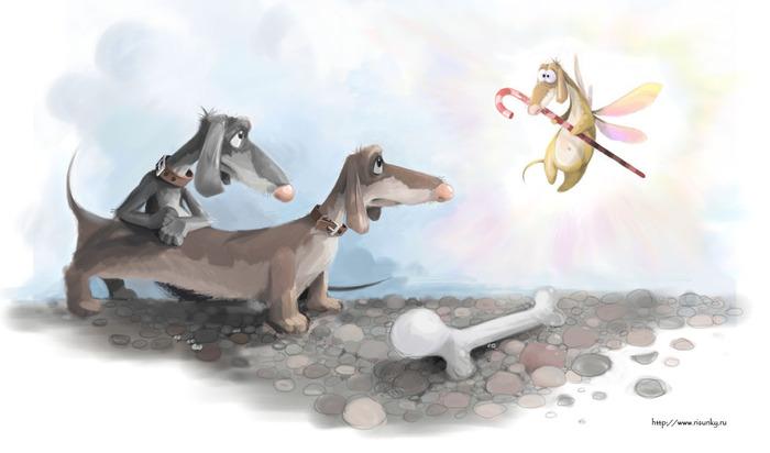 dachshund (700x412, 57Kb)