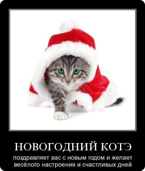 Новый год поздравление (488x576, 189Kb)
