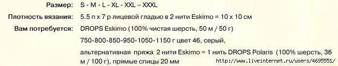 1317662490_6.1 (700x137, 61Kb)