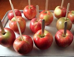 яблочки-1 (256x198, 54Kb)