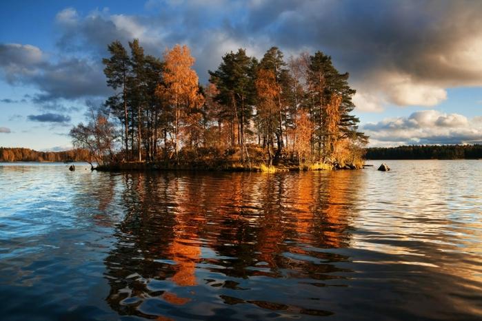 2 озеро вуокса осень (700x466, 271Kb)