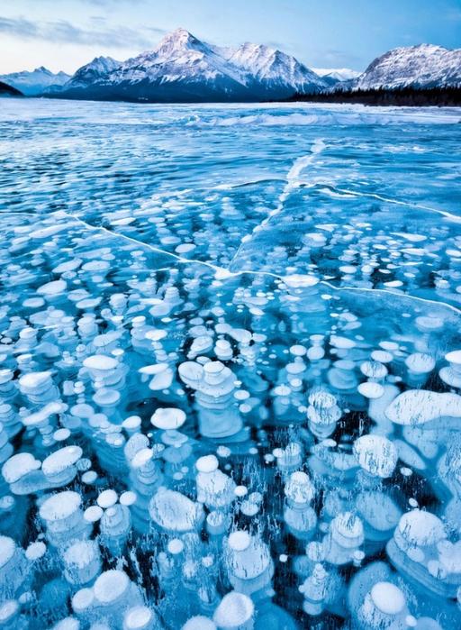 замерзшие пузырьки воздуха (512x700, 536Kb)