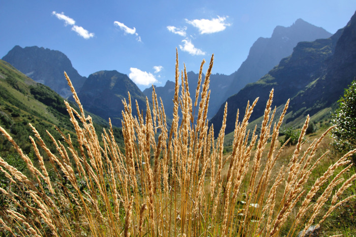 кавказ долина красиво (700x465, 184Kb)