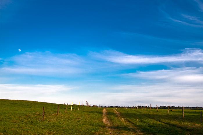 поле и небо (700x466, 160Kb)