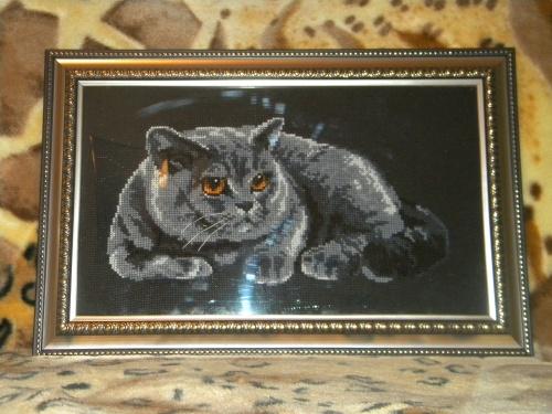 Британский кот (вышивка