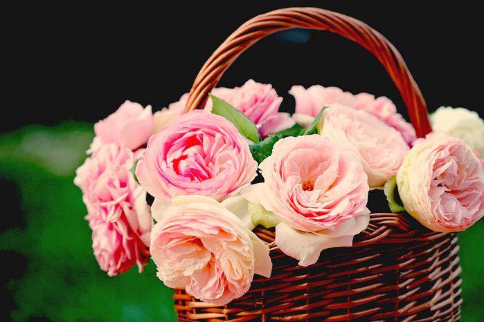 цветы корзина (700x466, 328Kb)