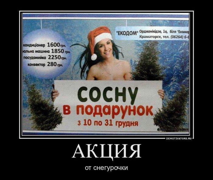 2 сосну в подарок (700x591, 87Kb)