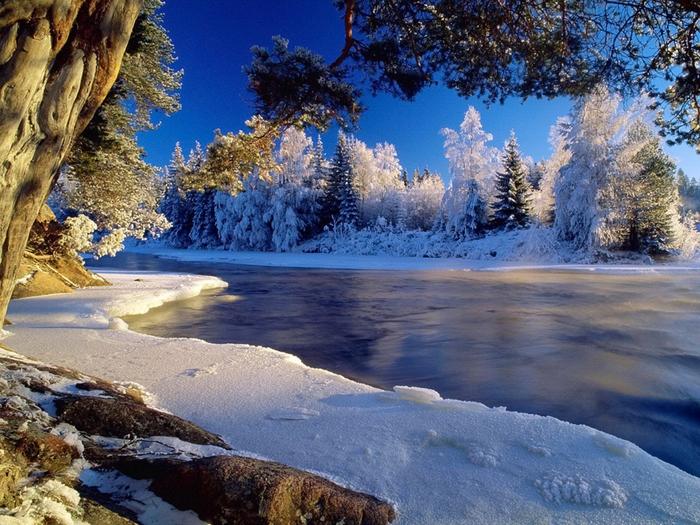 2 красивая зима (700x525, 542Kb)