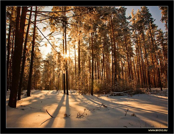 Картинки самые красивые пейзажи зимней природы