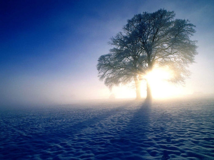 11 красивая зима (700x525, 374Kb)