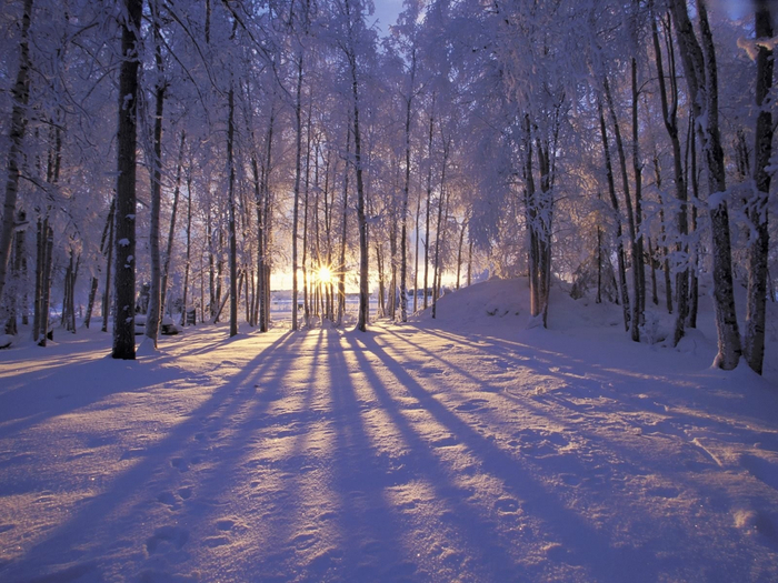 13 красивая зима (700x525, 481Kb)