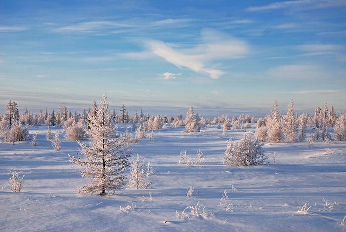 16 красивая зима (700x469, 138Kb)