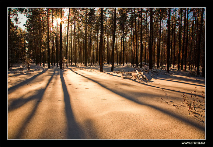 18 красивая зима (700x483, 195Kb)