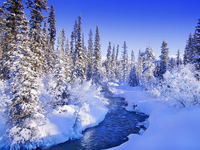 19 красивая зима (700x525, 552Kb)