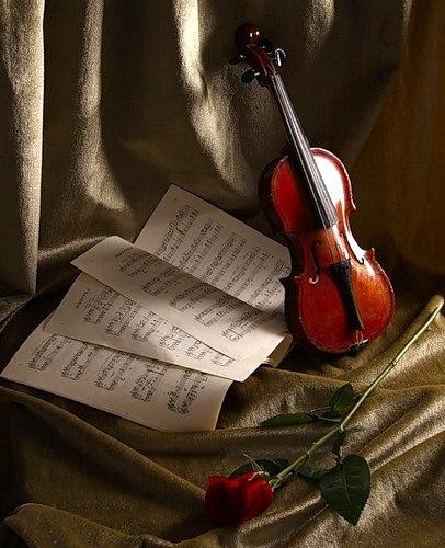 Опубликовал.  Неразобранное.  Скрипка, листок с нотами, красная роза.  GRAF.