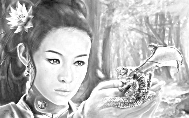 Рисунок карандашом девушка фэнтези