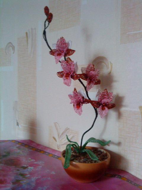Бисероплетение цветы орхидеи мастер класс. бисер белый, розовый, цвета шампанского 12.