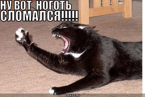 1324399250_nogotslomalsya_1316260671 (500x333, 42Kb)