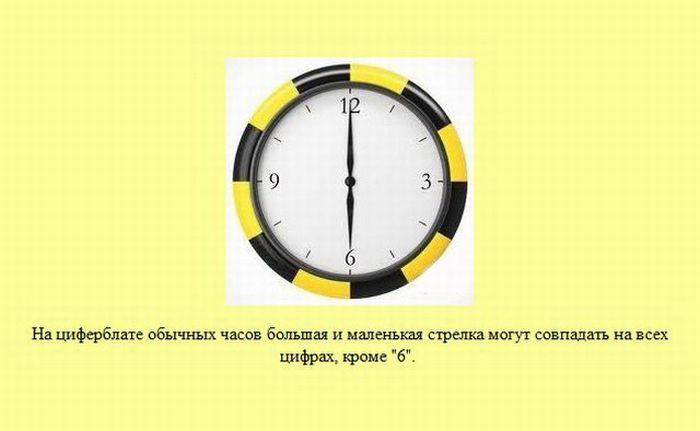 fakti_27 (700x431, 36Kb)