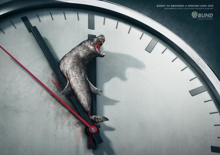 Каждые 60 секунд умирает какой-то вид животных