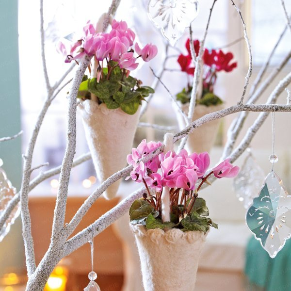 home-flowers-in-new-year-decorating2-2 (600x600, 72Kb)