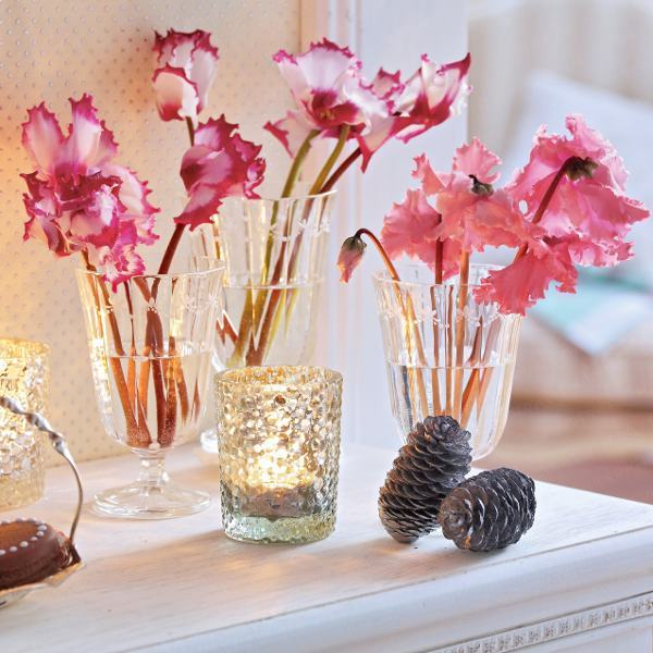 home-flowers-in-new-year-decorating2-6 (600x600, 59Kb)
