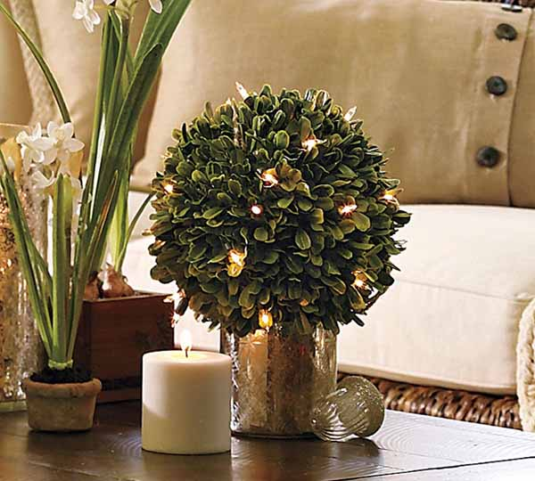 home-flowers-in-new-year-decorating3-11 (600x540, 51Kb)