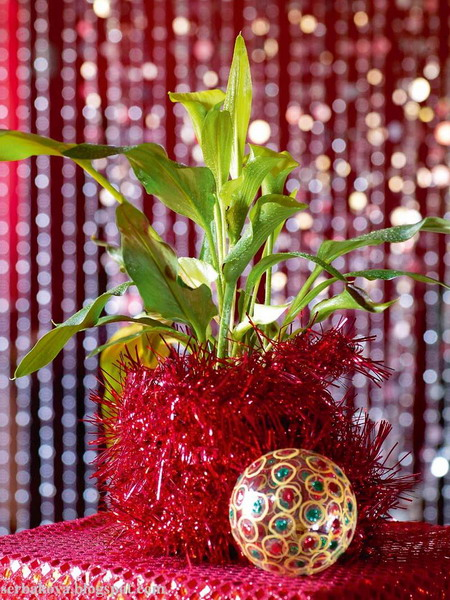 home-flowers-in-new-year-decorating4-1 (450x600, 127Kb)
