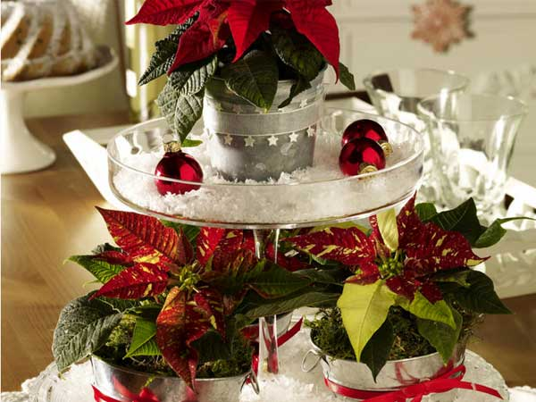 home-flowers-in-new-year-decorating1-9 (600x450, 42Kb)