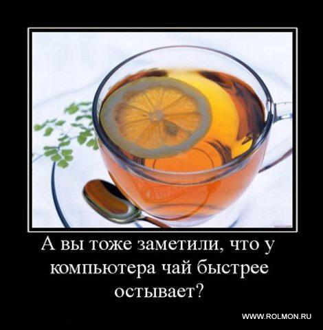 1 чай (470x480, 49Kb)