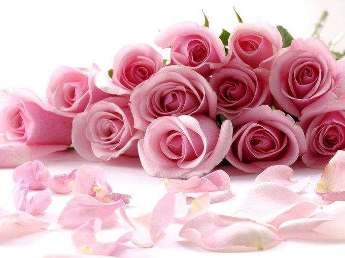 rose_104 (700x525, 75Kb)