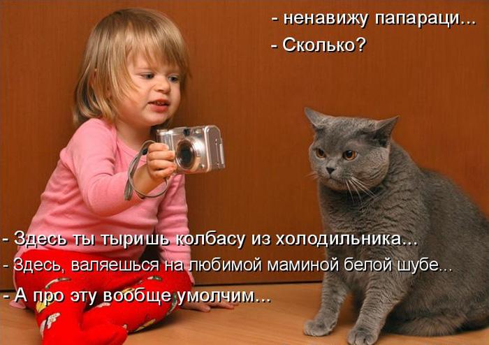 prikolnye-koty-i-sobaki-79 (700x494, 132Kb)