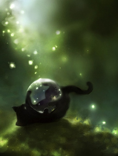 Коты с пузырями картинки