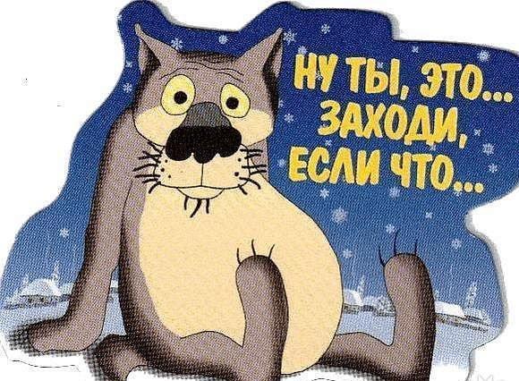 смешные истории из жизни/3185107_volk (580x426, 90Kb)