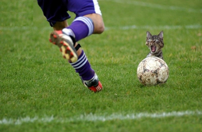 Futbol_full копия (400x261, 93Kb)