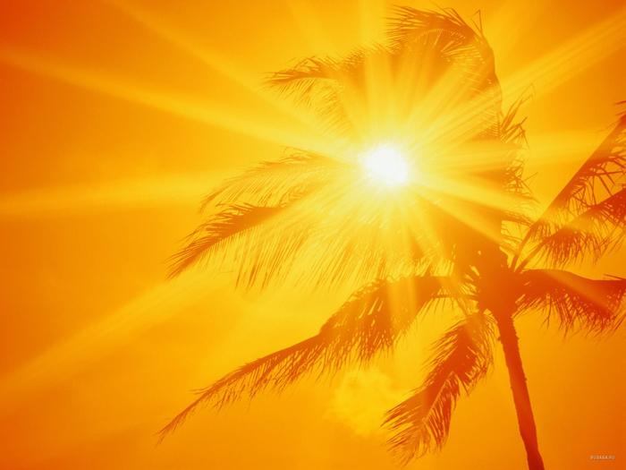 1212861238_ala-moana-beach-park-oahu-hawaii-1600x1200- (700x525, 327Kb)