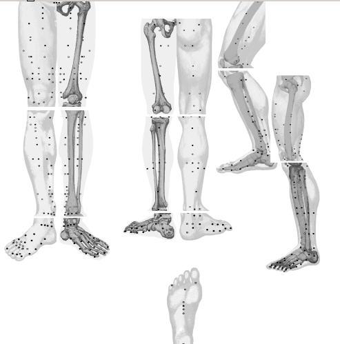 Ноги (493x499, 29Kb)