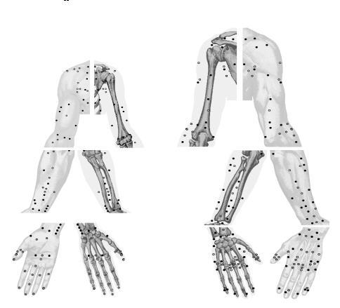 Руки (484x439, 25Kb)